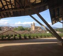 Gastro-Camino:  Navarra y La Rioja y el Camino Francés