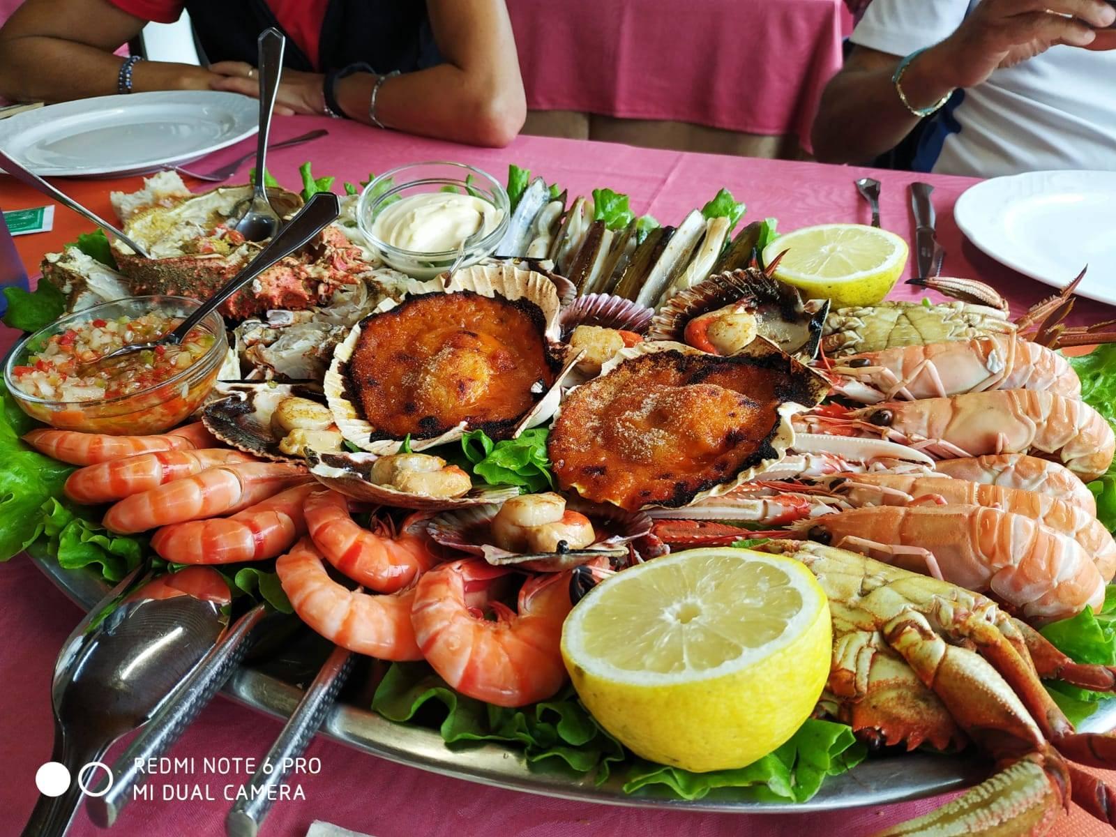 Gastro-Camino : 100 km del Camino francés con cocina selecta