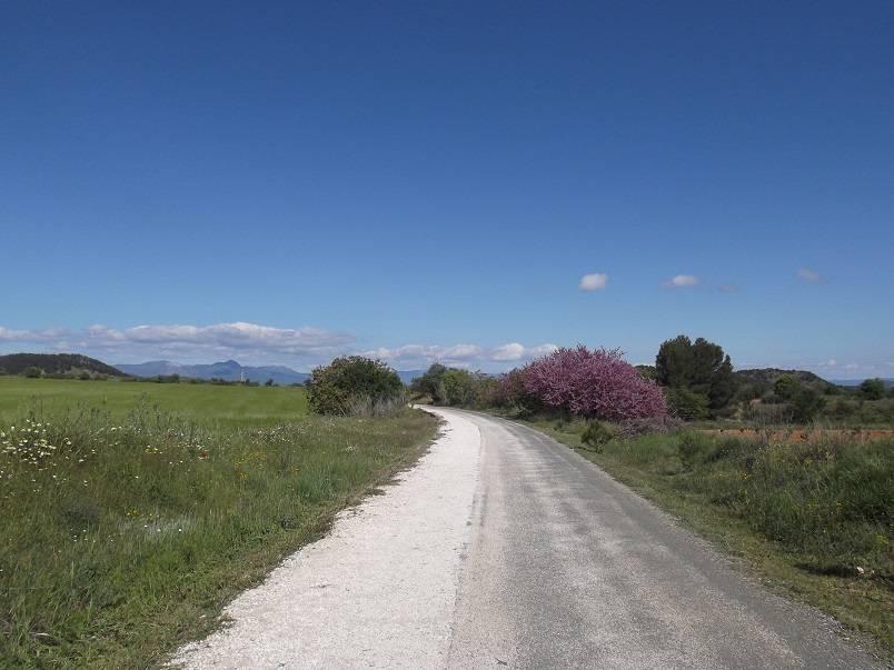 Vía Verde del Noroeste y Valle de Ricote - ruta en bici autoguiada