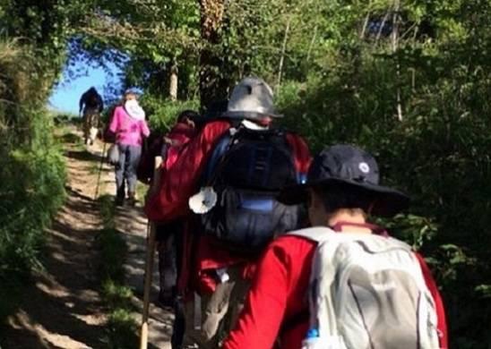 El Camino en grupo, con guía y en alojamientos singulares desde Sarria