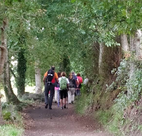 Portuguese camino in group from Tui